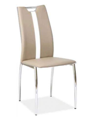 Tempo Kondela Jedálenská stolička Signa