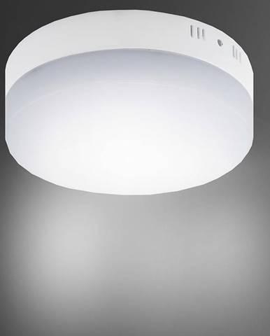 Stropné svietidló Robin LED C 12W 4000K 03086