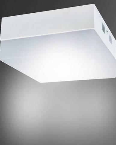 Stropné svietidló Robin LED D 6W 4000K 03089