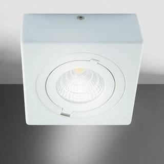 Stropné svietidló Igor LED D 9W white 4000K 03128