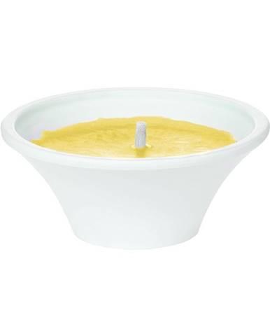 SUN SALUTE Misa so sviečkou - žltá
