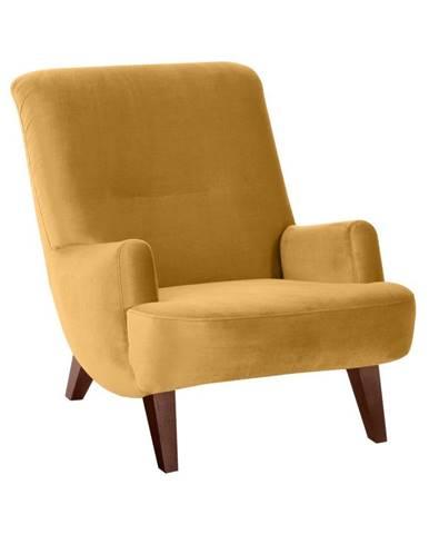 Žlté kreslo s hnedými nohami Max Winzer Brandford Suede