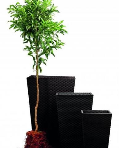 ArtRoja Rattan planter S - grafit