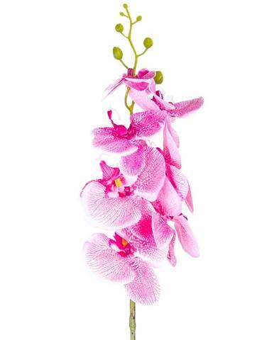 Umelá Orchidea tm. ružová, 86 cm
