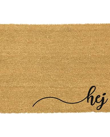Rohožka z prírodného kokosového vlákna ARTS Doormats Hej, 40 x 60 cm